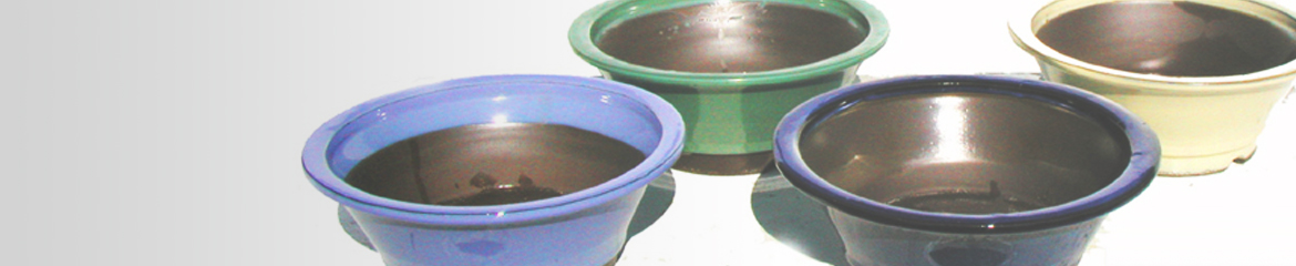 Bonsai Pots Yokkaichi Shop now!